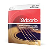 D'Addario Stahlsaiten für 12-saitige Westerngitarre | INNOVATION MADE IN USA | EJ39 | Phosphor Bronze | Medium (12-52)